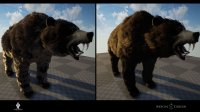 bear_changes_02.jpg