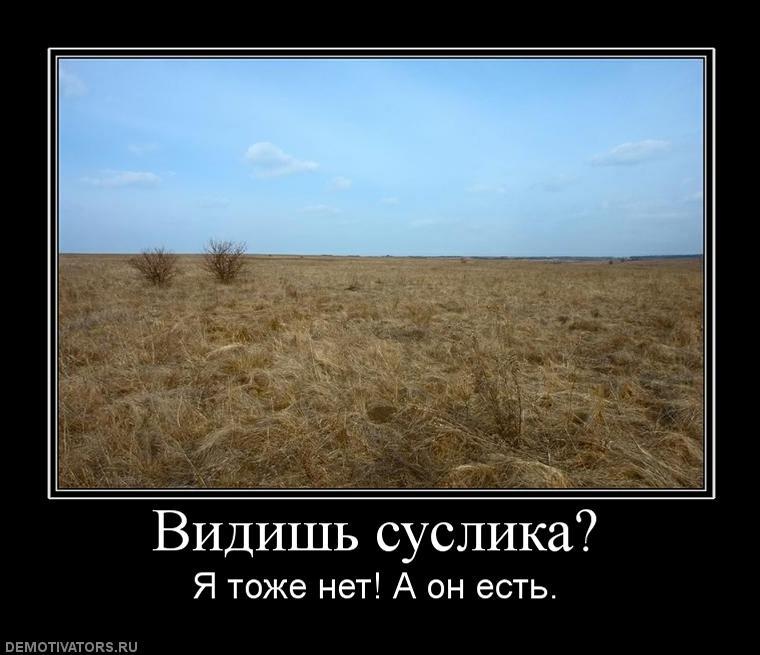 bc2f39c7779df0852fc84b7f4b8d2089_s-288.jpg